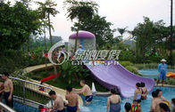 China Playground Swimming Pool Water Slide Multi Color Eco-friendly company